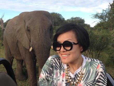 這個場面實在太驚險啦,跟身後的大象拍照,誰知它一個轉身就將長鼻子超近距離地靠在我身旁,嚇得我差點兒大叫起來!